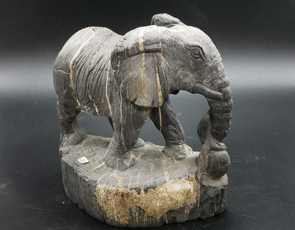 versteinertes Holz Elefant
